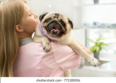 Female vet carrying a pug walking in her vet clinic copyspace pets animals healthy happy canine adorable breed examining check up doctor profession occupation trustworthy reliable specialist concept