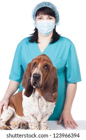 Female vet with a dog isolated