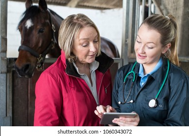 Female Vet Examining Horse In Stables Showing Owner Digital Tablet