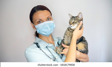 Female vet with a medical mask and a cat in her hands on a white background.