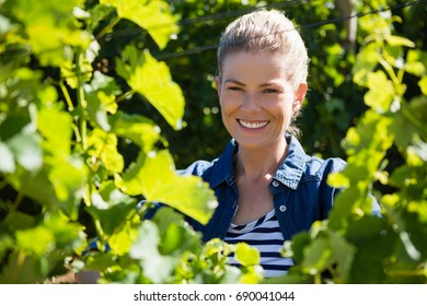 Female vintner standing in vineyard on a sunny day