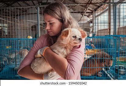 Female volunteer holds on hands little dog in shelter. Shelter for animals concept
