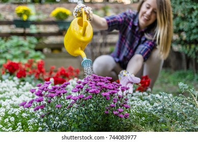 Female  watering flowers outdoors. Watering dry flowers with a yellow watering can. Beautiful female gardener