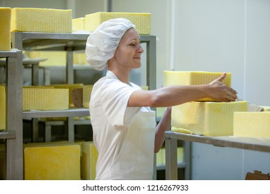 Female worker on yellow cheese production line in an industrial factory