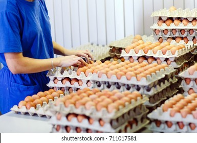 A female worker sorts the eggs.