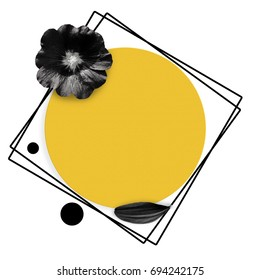 Feminine background. Yellow circle and black flower, black petal on white background. Modern woman background. Mallow flower