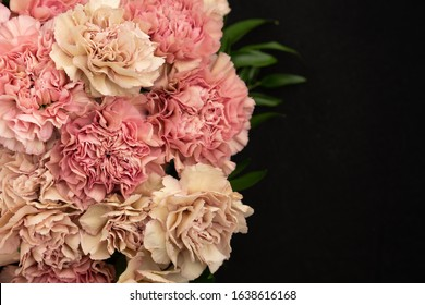 Feminine dloral background with blush and retro cream pastel carnations