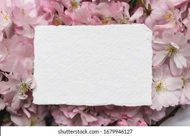 Feminine wedding, birthday mockup scene. Closeup of blank cotton paper card, invitation on pink floral petals. Sakura, japanese cherry tree blossoms. Spring floral, composition. Flat lay, top view.