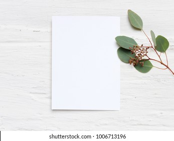 Feminine wedding desktop mock-up with blank paper card and Eucalyptus populus branch on  white shabby table background. Empty space. Styled stock photo, web banner. Flat lay, top view.