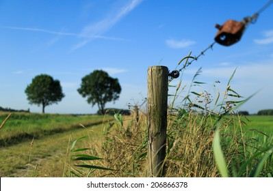 Fence and barbed wire in the countryside on a sunny, summers day.