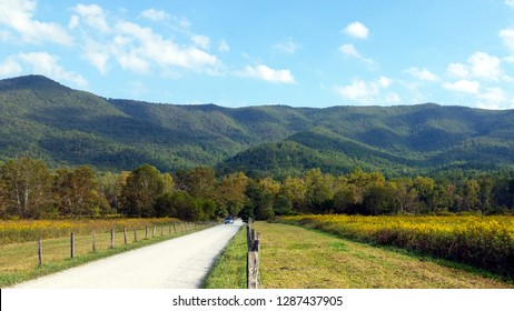 Fence Beside Country Road in Mountain Pasture
