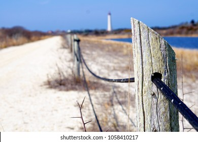 Fence at Cape May Point State Park