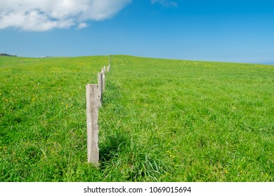 A fence in countryside