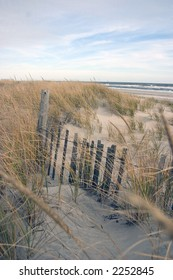 Fence in the dunes
