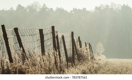 Fence in the field covered with frost