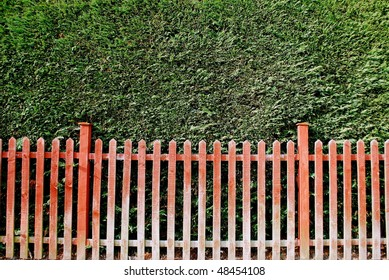 Fence and hedge