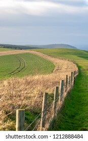 Fence leads away across fields on the South Downs