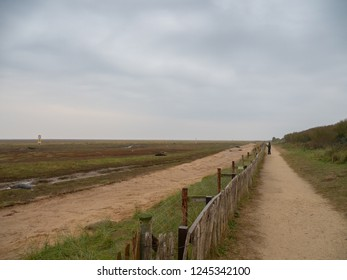 The Fence Line, Donna Nook Grey Seal Colony,  Lincolnshire.