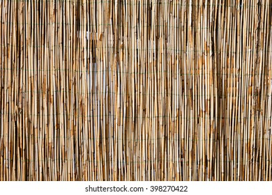 Fence made of dry reeed