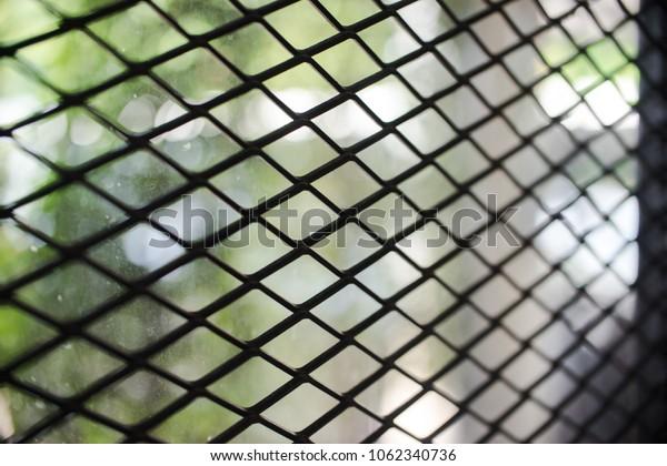 Fence made of metal mesh Rabitza, close-up