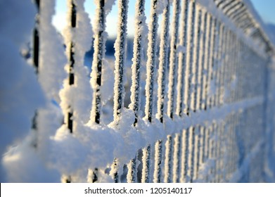 The fence of metal rods froze and covered with thick frost in winter