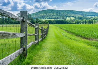 Fence on Billings Farm in Vermont.