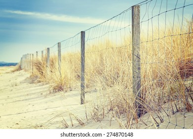 Fence on a dune, nature background, shallow depth of field.