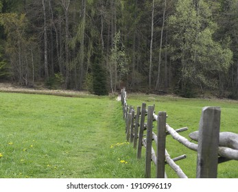 A Fence on a Meadow