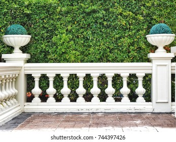 Fence over the green leaves wall in the park. Exterior garden decoration in classic style.