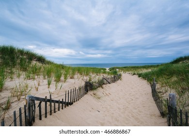 Fence and path through sand dunes at Race Point, in the Province Lands at Cape Cod National Seashore, Massachusetts.