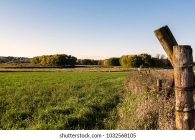Fence post in field before sunset on a nice Autumn day.