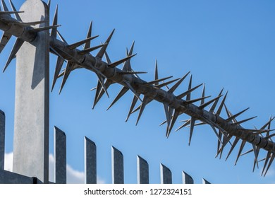 a fence with sharp spikes for secured areas. keeping thieves and burglars away from the area.