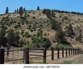 A fence surrounds a ranch at the bottom of a hill in rural Central Oregon on a sunny summer afternoon.