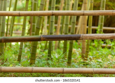 fence of three thin bamboo stems, in the background grows bamboo