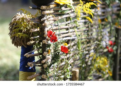 Fence in the village, garden, antique dishes. Poppy Flowers and Wildflowers