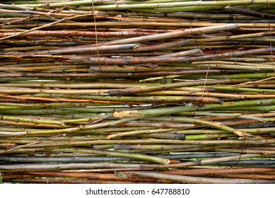 Fence Wicker Willow