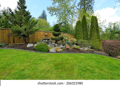 Fenced backyard with landscape. Decorative trees blend with rocks and lawn