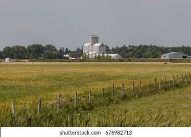 Fenceline Across Green Field With Grain Elevator in Distance
