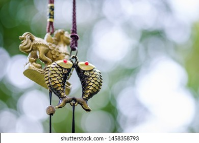 Feng shui chimes, golden couple fish chimes hanged outside the house, symbol of abundance and richness in Chinese culture