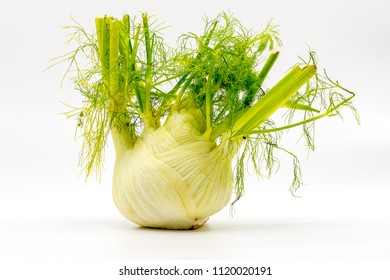 a fennel with green leafs