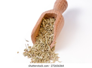 Fennel seeds in the bailer - full focus on fennel seeds