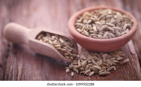Fennel seeds in a scoop on natural surface