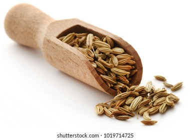Fennel seeds with scoop over white background