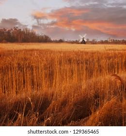 The fens in East Anglia, Cambridgeshire