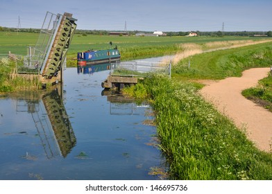 The fens in East Anglia are a marshy region, artificially drained and transformed into arable farming area with grains, vegetables and some cash crops such as rapeseed or canola.
