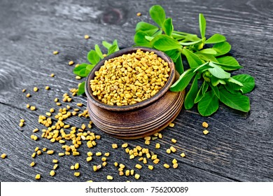 Fenugreek seeds in a bowl with green leaves on a wooden plank background