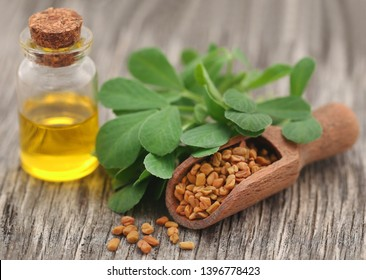 Fenugreek seeds with oil in bottle on wooden background