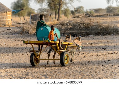 FERLO DESERT, SENEGAL - APR 25, 2017: Unidentified Fulani boys ride on the cart. Fulanis (Peul) are the largest tribe in West African savannahs
