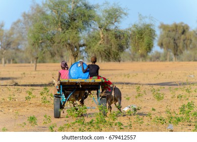 FERLO DESERT, SENEGAL - APR 25, 2017: Unidentified Fulani girls ride on the cart with donkeys . Fulanis (Peul) are the largest tribe in West African savannahs