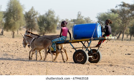 FERLO DESERT, SENEGAL - APR 25, 2017: Unidentified Fulani girls sit in the cart in the village . Fulanis (Peul) are the largest tribe in West African savannahs